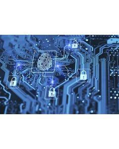 Defesa cibernética nas organizações